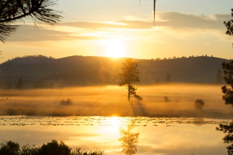 Early Morning Clearwater River