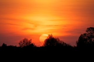 The Glowing Sun