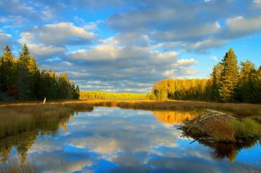 Beaver Lodge in Fall